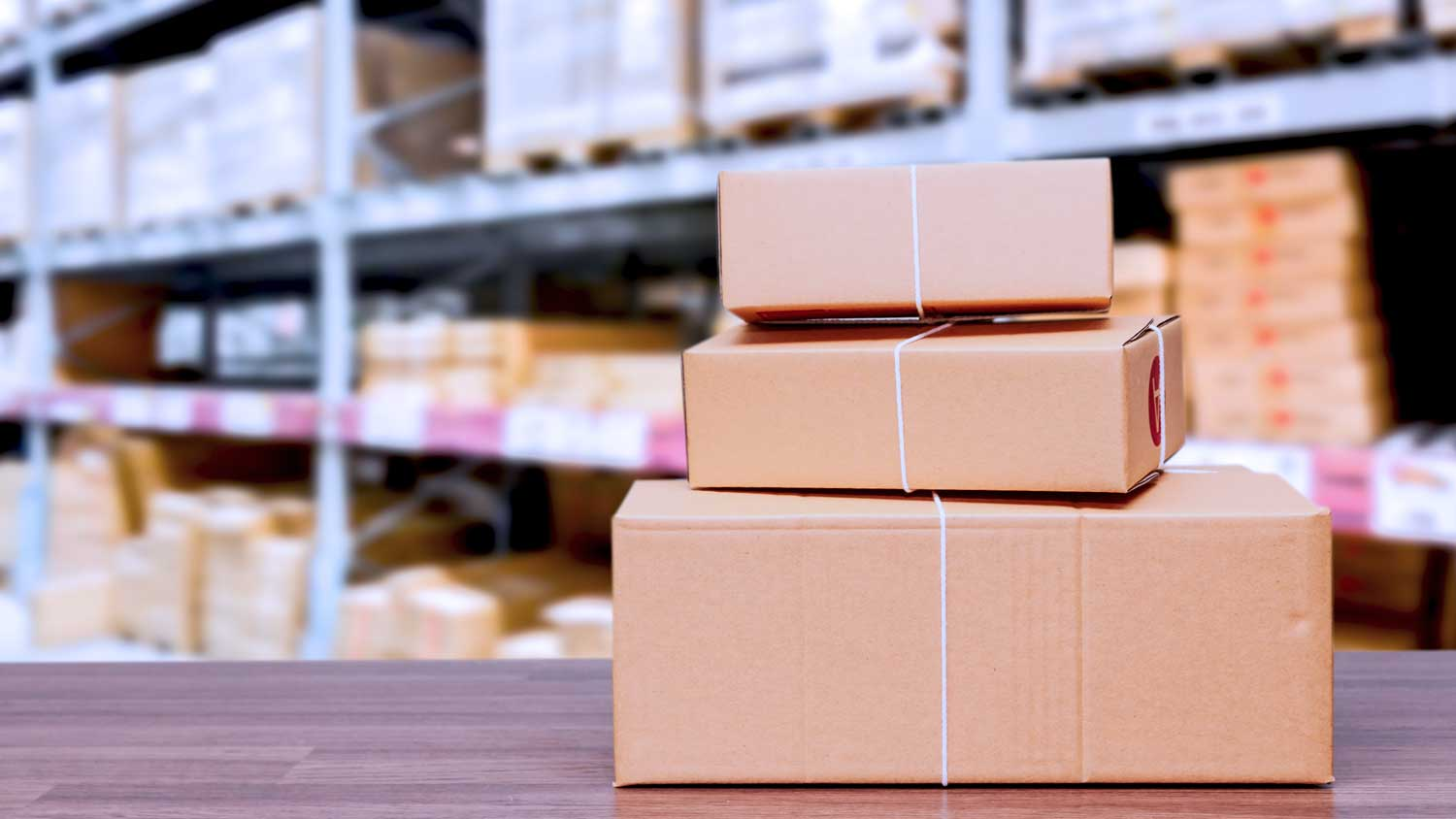 EMPOWER YOUR WAREHOUSE AND MAKE THE LAST MILE SHORTER